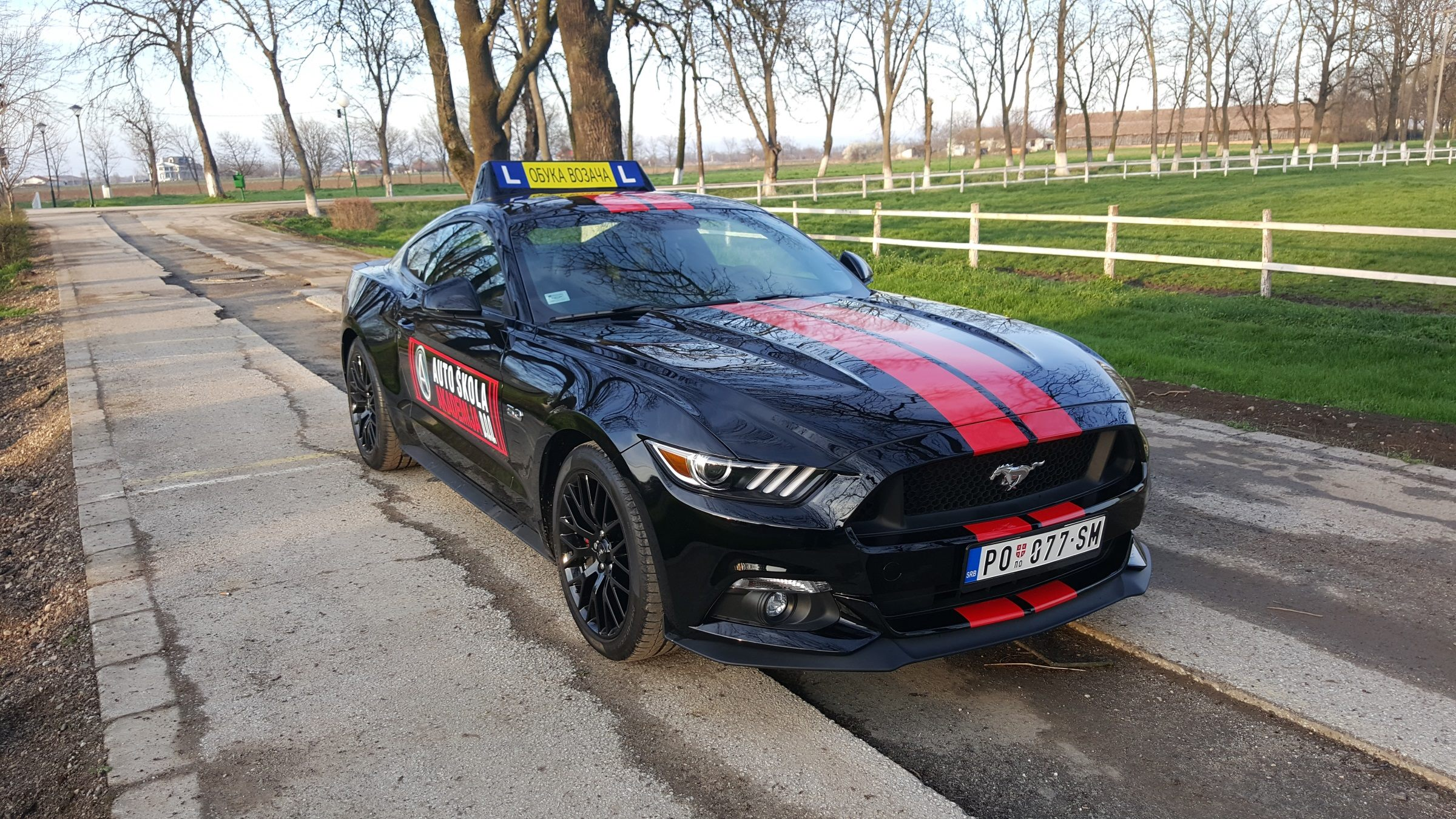 222_Ford_Mustang.jpg